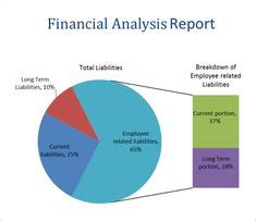 AN ANALYSIS OF FINANCIAL MANAGEMENT STRATEGIES FOR NEW